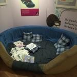 Mog's bed.